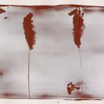 Hideaki-Yamanobe-Arbeiten-auf-Papier-Zwei-B+ñume-Memo-Red-10-2014-Acryl-auf-Papier-39-x-47-cm